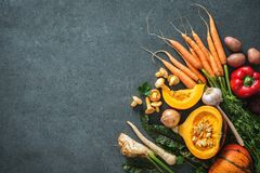 Autumn vegetables ingredients for tasty Thanksgining or Christmas dishes stock photos