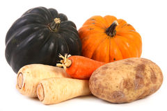 Autumn vegetables isolated Royalty Free Stock Photos