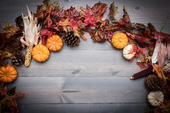 Autumn Vegetables, Kürbise und Blätter auf einem hölzernen Hintergrund lizenzfreies stockfoto