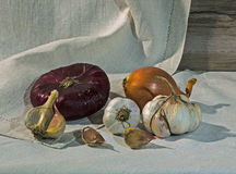 Autumn vegetables Stock Image