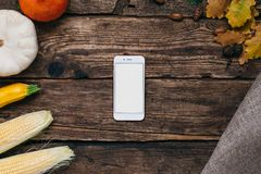 Autumn vegetables: mobile phone with white empty screen, pumpkins and corn with yellow leaves on a wooden background. Top view vector illustration