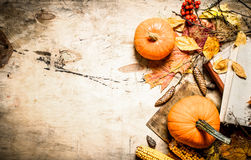 Autumn vegetables with an old book. Stock Images