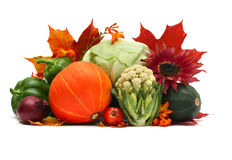Autumn Vegetables On White Royalty Free Stock Images