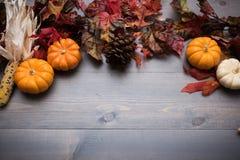 Autumn Vegetables, pumpor och sidor på en träbakgrund arkivfoton
