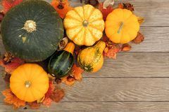 Autumn vegetables on wooden background Stock Photos