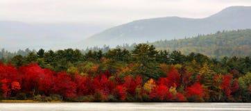 Autumn In Vermont Panorama photos libres de droits