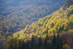 Autumn vermont Stock Photos