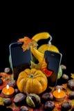 Autumn Versus Stock Image