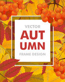 Autumn vertical background with rowan, berries and leaves. Frame. Fall. Vector illustration Royalty Free Stock Images