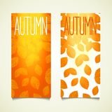 Autumn vertical banner Royalty Free Stock Photos