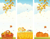 Autumn vertical banners. Illustration of autumn vertical landscapes Stock Images