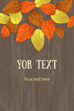Autumn vertical vector banner Royalty Free Stock Images