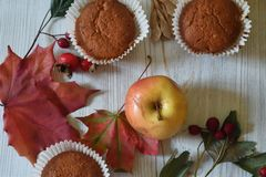 Fall muffins on white rustic background. Autumn vibes through fall backgrounds stock photo