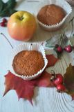 Fall muffins on white rustic background. Autumn vibes through fall backgrounds royalty free stock photo