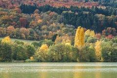 Autumn vibrations Stock Images