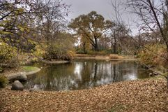 Autumn in Vienna park Royalty Free Stock Image