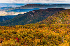 Autumn view of the Appalachians from Loft Mountain, Shenandoah N Royalty Free Stock Photography
