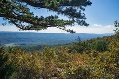 Autumn View av gåsliten vikdalen och blåa Ridge Mountains royaltyfri fotografi