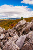 Autumn view of the Blue Ridge Mountains from the boulder-covered Royalty Free Stock Image