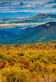 Autumn view of the Blue Ridge Mountains and Shenandoah Valley fr Stock Photos