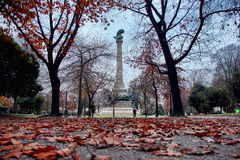 Autumn view of Boavista square, Porto Portugal Stock Image