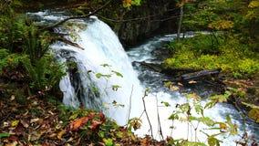 Autumn view of Choshi Otaki Waterfalls in Oirase Gorge