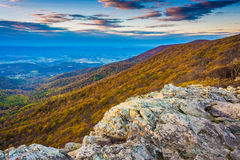 Autumn view from Crescent Rock, Shenandoah National Park, Virgin Stock Images