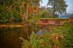 Autumn view Royalty Free Stock Photography