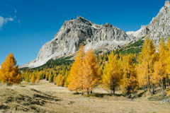 Autumn view of Dolomites. Autumnal view of the top of the mountain Lagazuoi, Dolomites Italy Royalty Free Stock Photography