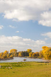 Autumn view of the Dutch river IJssel between Arnhem and Zutphen Royalty Free Stock Photo