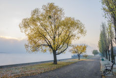 Autumn view of the embankment of the Dnieper River Stock Image