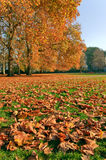 Autumn view of Green Park Stock Photos