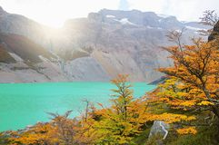 Autumn view of Laguna del Diablo. Royalty Free Stock Images