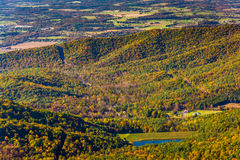 Autumn view of a lake in the Shenandoah Valley, from Skyline Dri Royalty Free Stock Images
