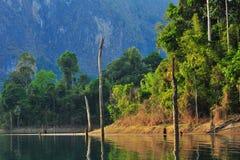 Autumn view of lake Royalty Free Stock Photo