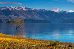 Autumn view at Lake Wanaka, New Zealand. Stock Photos