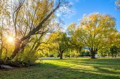 Autumn view of the lakeside in Lake Hayes,New Zealand. Autumn view of the lakeside in Lake Hayes,it is located in the Wakatipu Basin in Central Otago,South Stock Images