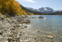 Autumn view of a mountain lake shoreline Royalty Free Stock Images