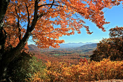 Autumn View in the Mountains. View of distant mountains through autumn trees on Blue Ridge Parkway, North Carolina Royalty Free Stock Images