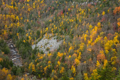 Autumn view of the mountains in West Virginia Royalty Free Stock Photography