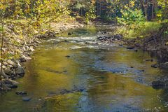 Free Autumn View Of Wilson Creek Stock Images - 102943024