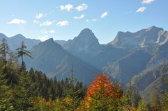 Alpine panoramic landscape in austria Royalty Free Stock Images