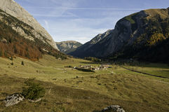 Autumn view over Eng Alm and Ahornboden. An autumn view over the alpine pastures of Eng Alm and the natural reserve Ahornboden in Austria Stock Image