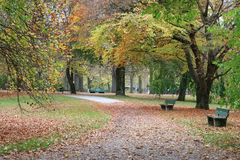 Autumn view in a park. Autumn in a park in Munich Germany. Two bench's Stock Images