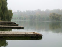 Autumn view in park with fog Royalty Free Stock Photo