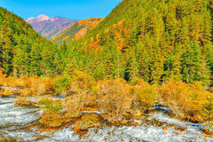 Autumn view of Pearl Shoals with pure water. Stock Photo