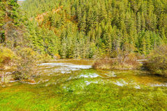 Autumn view of Pearl Shoals with pure water. Royalty Free Stock Photography