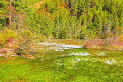 Autumn view of Pearl Shoals with pure water. Stock Photos