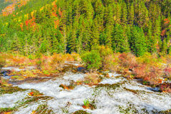 Autumn view of Pearl Shoals with pure water. Stock Photography