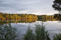 Autumn view at the river Royalty Free Stock Photography